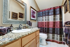 chic_bathroom_granite_countertop